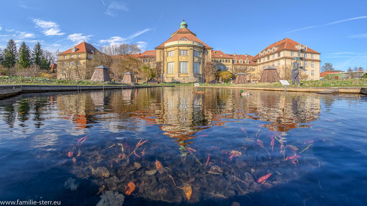 Botanisches Institut und kleiner Teich im Schmuckhof/ Botanischer Garten München
