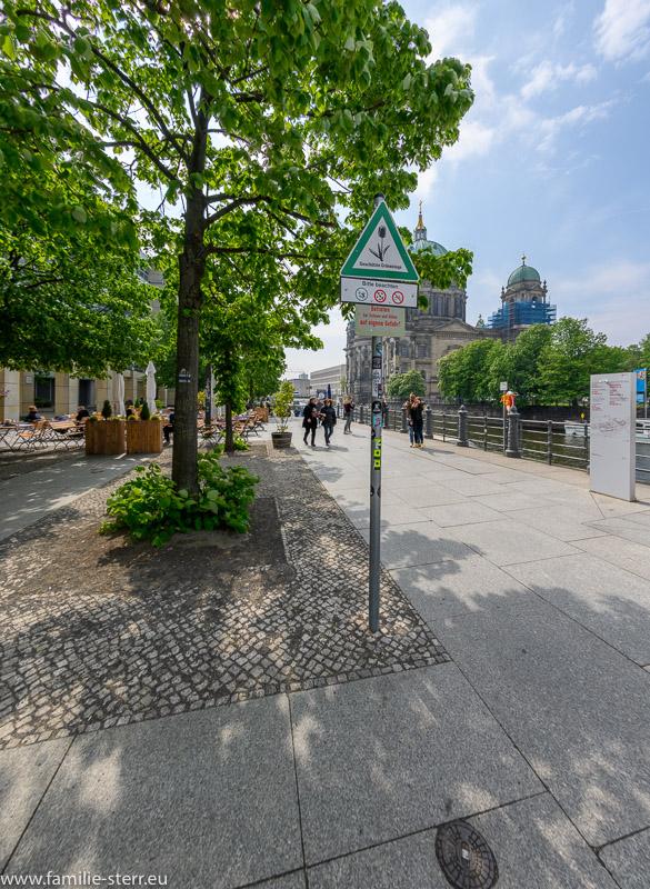eschützte Grünanlage - Grünanlage am Berliner Dom