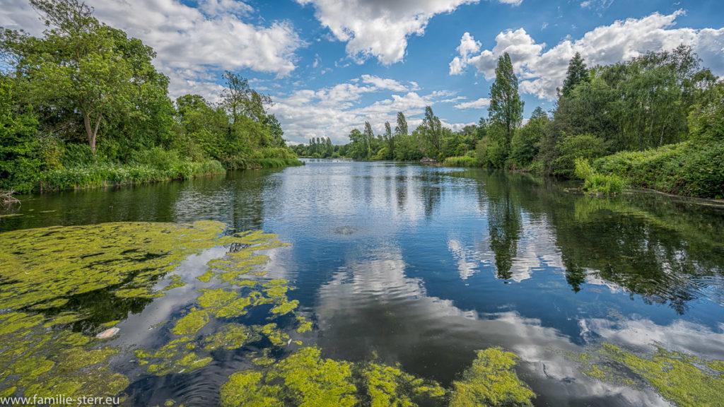 Serpentine - Teich im Hyde Park vom Italian Garden aus gesehen