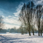 Winterlandschaft mit Schnee am Kronthaler Weiher in Erding