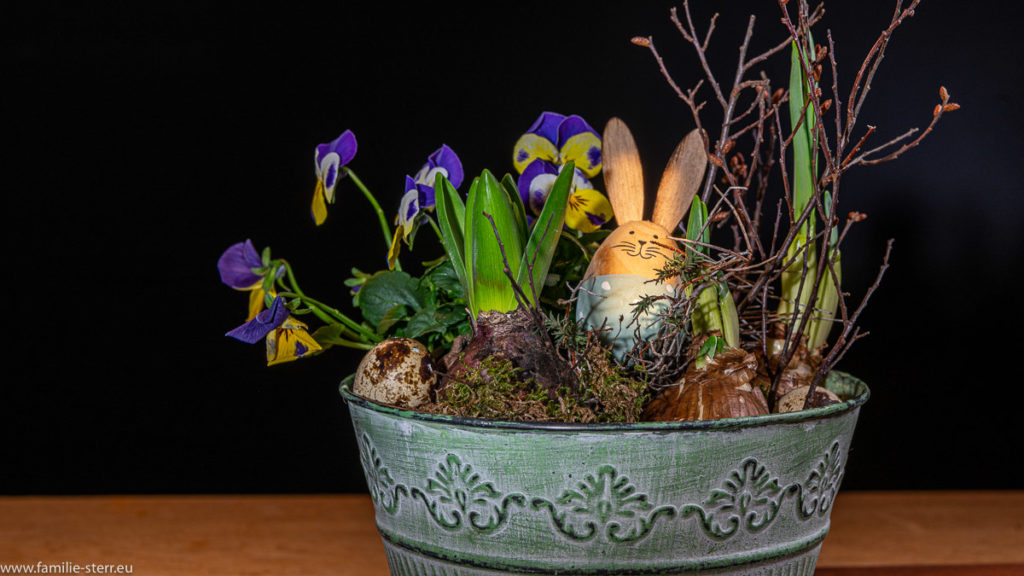 Ostergesteck mit Stiefmütterchen und einem Holz - Osterhasen