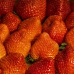 eine ganze Menge Erdbeeren nebeneinander in der Kiste liegend