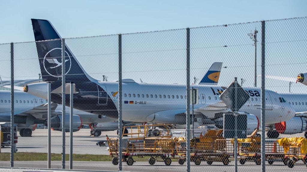 geparkte Flugzeuge der Lufthansa und leere Gepäckwagens auf dem Vorfeld West am Flughafen München