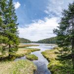kleiner Fluß fließ in den großen Arbersee