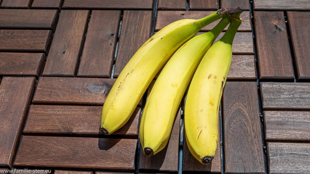 Drei schöne, gelbe, noch nicht überreife Bananen vor einem braunen Hintergrund
