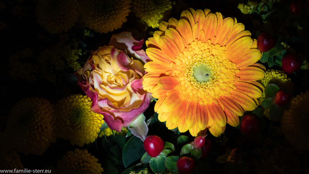 Rosen und Gerbera in einem farbenfrohen Blumenstrauss