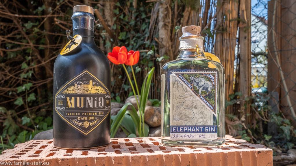 zwei Flaschen Gin auf einem Ziegelstein im Garten vor einer roten Tulpe