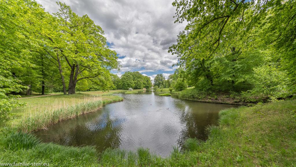 Blick in die großzügige Parkanlage und einen der See im Schlosspark Branitz