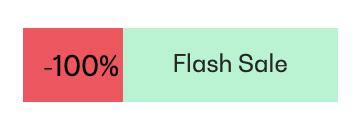 100% Rabatt im Flash-Sale - Angebot auf einer Webseite